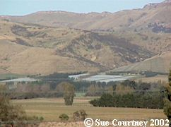 Waipara looking east
